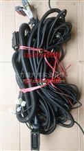 东风特商底盘电瓶线束总成底盘线束搭铁线/3137A1011-24170