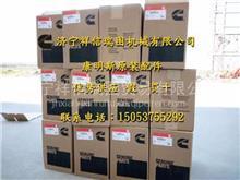 活塞环子|福田欧曼ISME345发动机|大修四配套/ISME345活塞环子