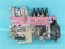 解放锡柴WX4DF2-1309高压油泵提前器输油泵化油喷油器/4PWS8