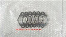 供应适用于美国康明斯QSL9排气歧管垫总成/C3937479