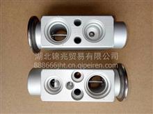 东风猛士 EQ2050配件-空调膨胀阀总成 8106Z45-010/8106Z45-010