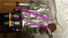 VG1246080050重汽D12共轨喷油泵总成/VG1246080050