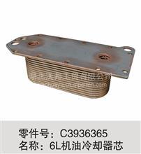 6L机油冷却器芯/C3936365