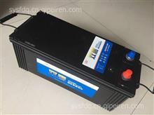 汽车免维护蓄电池/6-QA-165A(800)