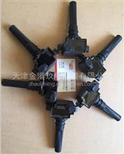 玉柴燃气点火线圈/J5700-3705060A