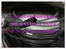 陕汽德龙聚酰胺管(PA10)/X190003179784