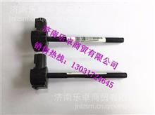 WG9925530012中国重汽豪沃A7水位传感器总成 /WG9925530012