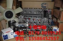配套厂家康明斯发动机燃油喷射泵C4994909