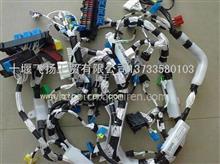 东风天龙雷洛驾驶室车身线束总成/3724020-C0321/3724020-C0320/37