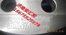 重汽T5GM5G曼桥前制动刹车盘制动盘/WG4005449003