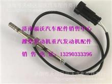 重汽老款SCR包前后温度传感器/WG1034120005
