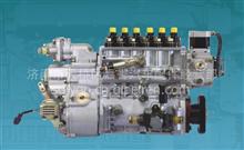 中国重汽杭发喷油泵总成/VG1518081002
