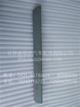 西安陕汽德龙F2000左后翼子板装饰条/DZ1640230173