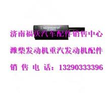 重汽豪沃温度传感器/WG1630820313