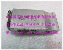 陕汽德龙F2000膨胀阀/DZ13241821115