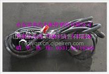 陕汽德龙QH70取力器底盘电线束/DZ93319776162