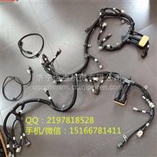 批发零售正品/高仿康明斯QSL9电脑板线束3965704发电机3935530/3965704  3935530