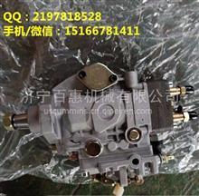 4B3.3燃油泵C6204711360(不带增压)柴油泵C6205711370(带增压/C6204711360、C6205711370