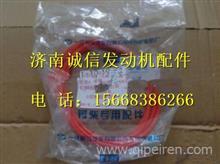 1002017-81D一汽锡柴6DM柴油机缸套O型橡胶密封圈/1002017-81D