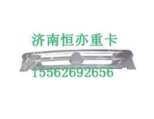 WG1632116001重汽金王子散热器面罩/WG1632116001