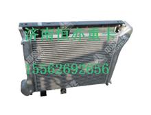 WG9725530268重汽豪沃HOWO小马力中冷器总成/WG9725530268