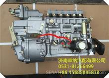 BHT6P120R潍柴WD615.46发动机高压油泵/61560080302