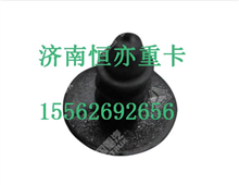 WG1642110022重汽豪沃A立柱固定用塑料铆钉/WG1642110022