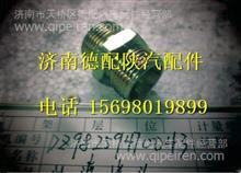DZ98259470043陕汽德龙L3000过渡接头/DZ98259470043