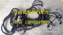 DZ96319775608陕汽德龙新M3000底盘电线束/DZ96319775608