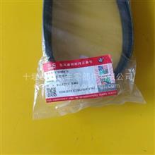 供应原厂东风天龙康明斯发动机风扇传动带总成/C3288475/3288475