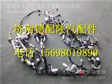 DZ95189777100陕汽德龙新M3000驾驶室线束总成/DZ95189777100