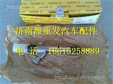 612600080611博世进口喷油器总成/612600080611