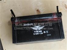 山东唐骏欧铃   T3     蓄电池    免维护120/101037060086