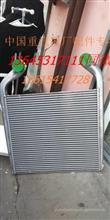 重汽汕德卡C7H中冷器总成/C7H汕德卡中冷器总成WG9925530137/WG9925530137