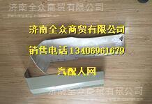 陕汽德龙X3000驾驶室翼子板 DZ14251230011/12/DZ14251230011/12