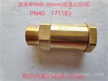 进液单向阀-36mm(低温止回阀)/PN40  171783