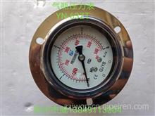 气瓶压力表/YN-63ZT