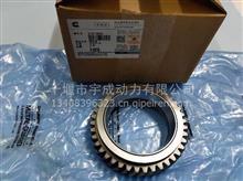 【3161385】适用于康明斯发动机QSM11 ISM11 M11惰齿轮  /3161251 M11惰轮齿