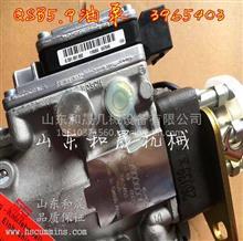 特价2件:电控模块4921411(QSK19控制模块3867743)/电控模块4921411