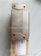 奥铃,蒙派克风景,欧马可,瑞沃,时代福田康明斯ISF3.8机油冷却器芯 /散热器芯 4990291