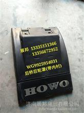 WG9925954031  重汽汕德卡C7H T7H后桥后轮罩(带内衬)/WG9925954031