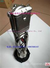 A058G448,C5418031-DFM  液位温度传感器/A058G448,5418031