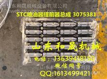 康明斯K19 K38 K50  Nt85STC喷油器提前器总成 3075381/3075381