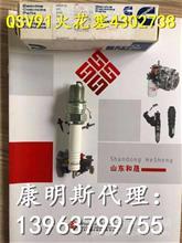 QSV91G火花塞4302738 康明斯天然气发电机组专供/4302738