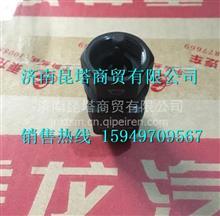 RX1562VZ-3824040柳汽霸龙507里程表车速传感器/RX1562VZ-3824040