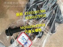 MQ6028143014 重汽MCY13 六角头螺栓(轴承座与主减壳连接螺栓)/MQ6028143014