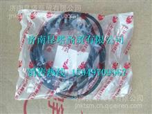 8401-631005红岩杰狮前面罩锁 5801960307   /8401-631005