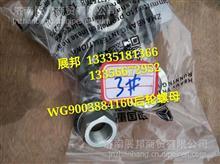 WG9003884160  重汽曼桥MCY13 车轮螺母/WG9003884160