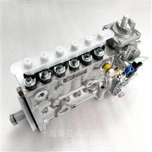 广西柳工千赢新版appL9.3燃油喷射油泵总成5304292装载机叉车高压油泵/5304292