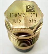 1015 配RENAULTRUCHS燃油共轨泄压阀总成7420793590  PLV4-HU-015/1110010015